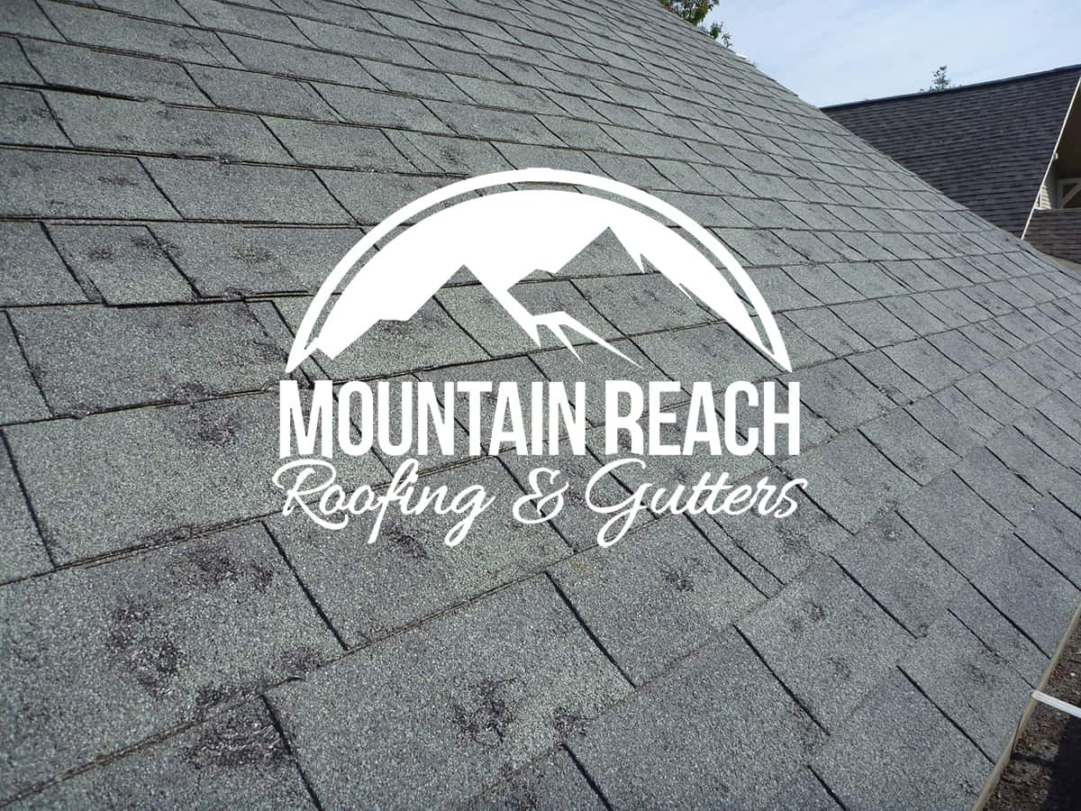 Insurance Roof Claims