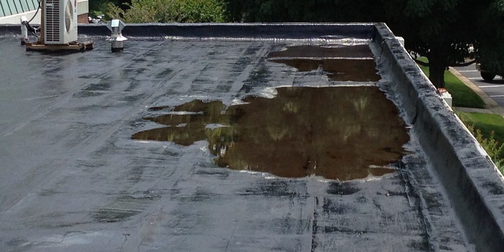 Ponding-Water-On-Roof
