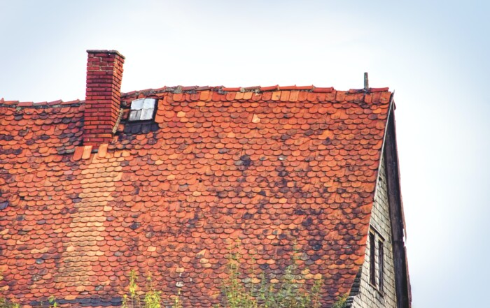 What Causes Roof Rot