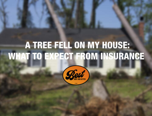 A Tree Fell On My House: What To Expect From Insurance