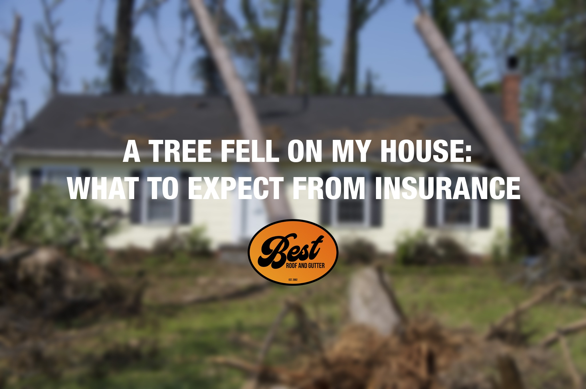 A Tree Fell On My House What To Expect From Insurance